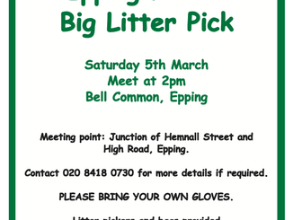 Epping Forest Big Litter Pick Saturday 5th March 2pm Bell Common, Epping