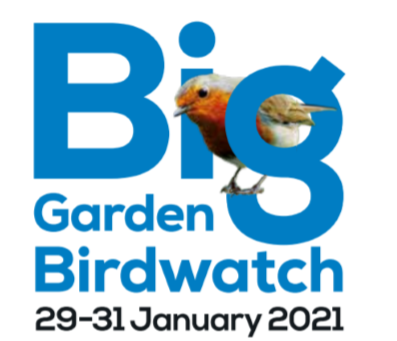 RSPB: The Big Garden Bird Watch