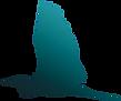 logo%20Do_edited.png