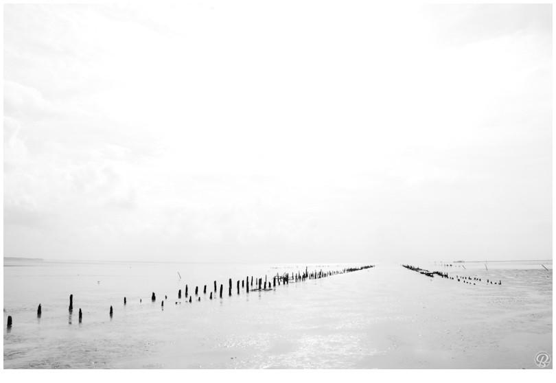 Baie de l'Aiguillon