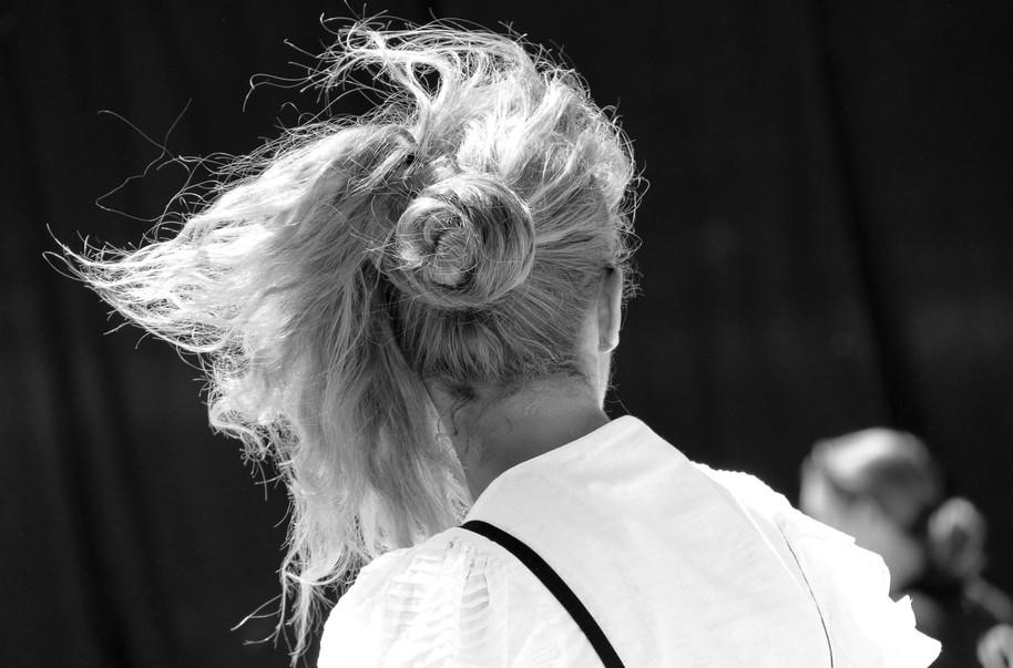 Vent d'un été blond périgourdain