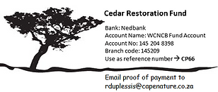 Donations to Cedar Project.png