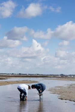 Pêche à pieds_54_BD