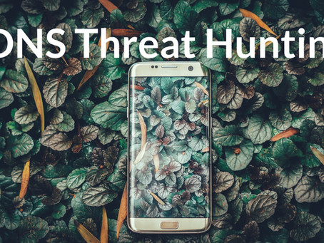 DNS Threat Hunting With Gigasheet