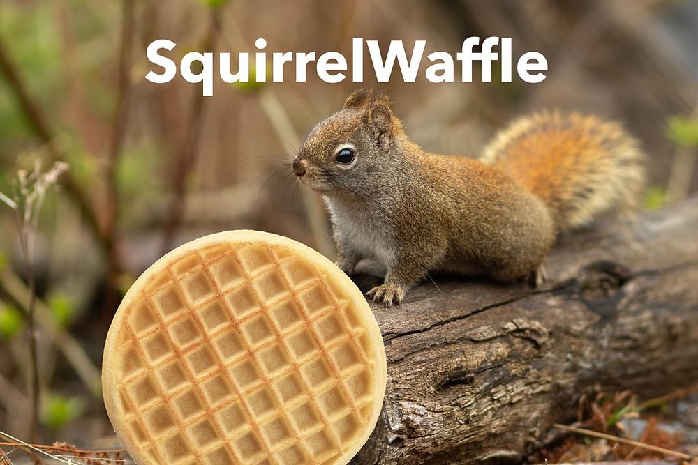 SquirrelWaffle Analysis