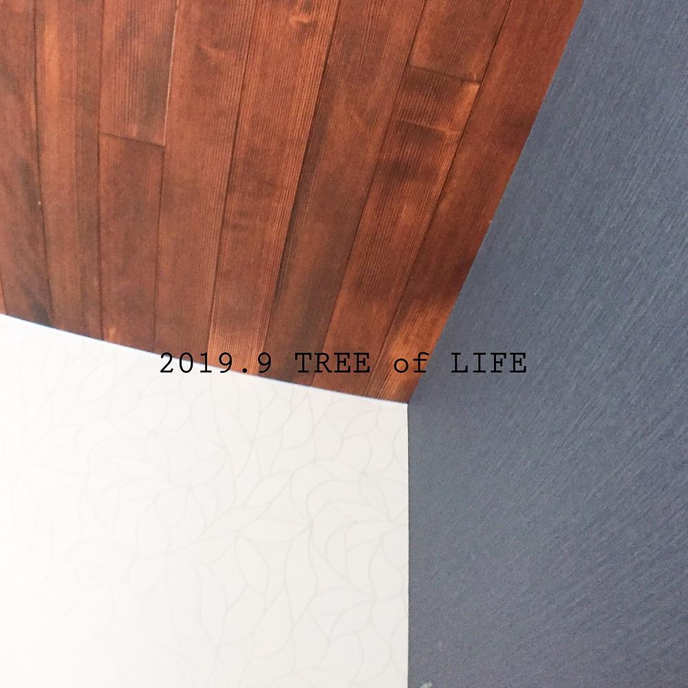 2階寝室クロスと天井