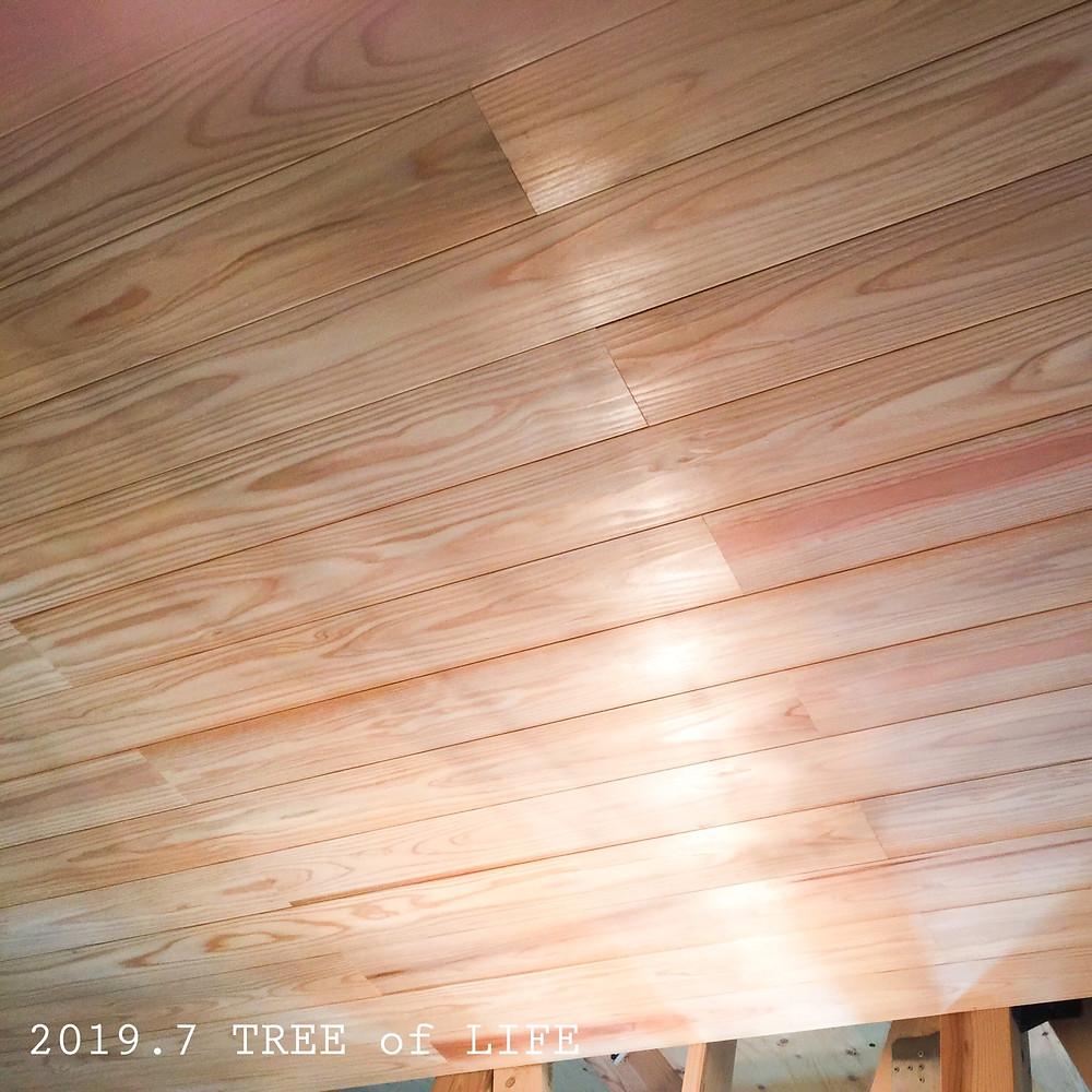 1階廊下 天井…吉野杉