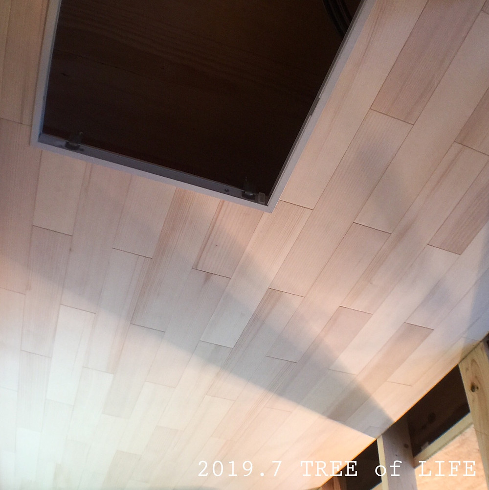 ④パントリー 天井…モミ