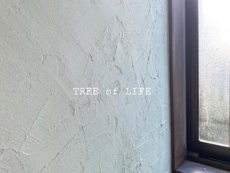 <洗面所壁を塗壁にプチリフォーム>掛川市/C様邸