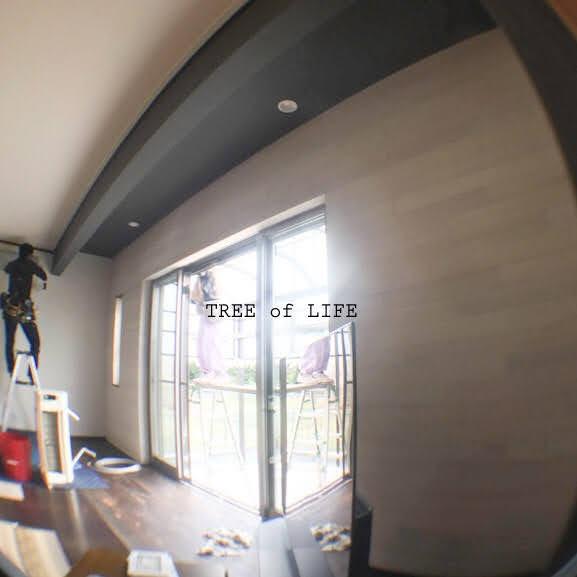 天井と壁の一部はクロスです。