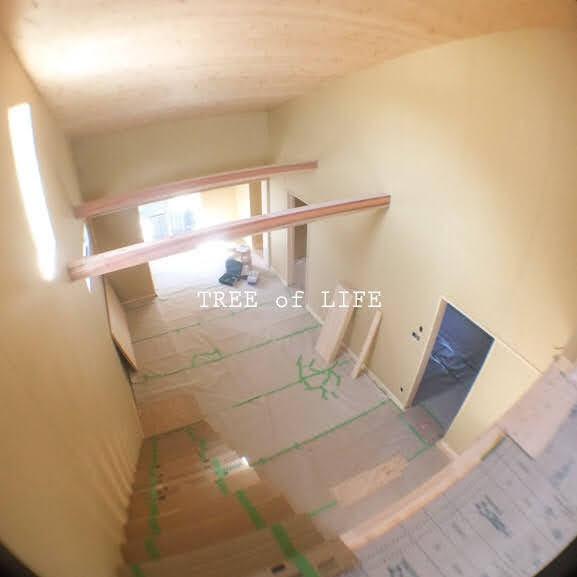 2階から見た所