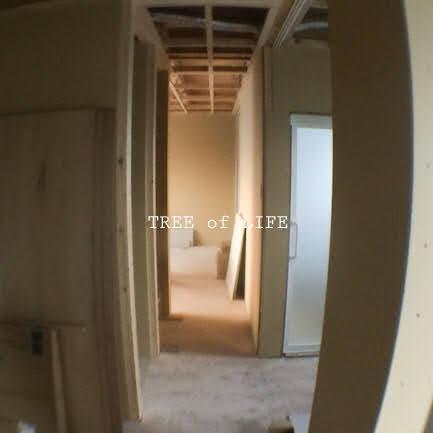 1階洋室→廊下・リビング