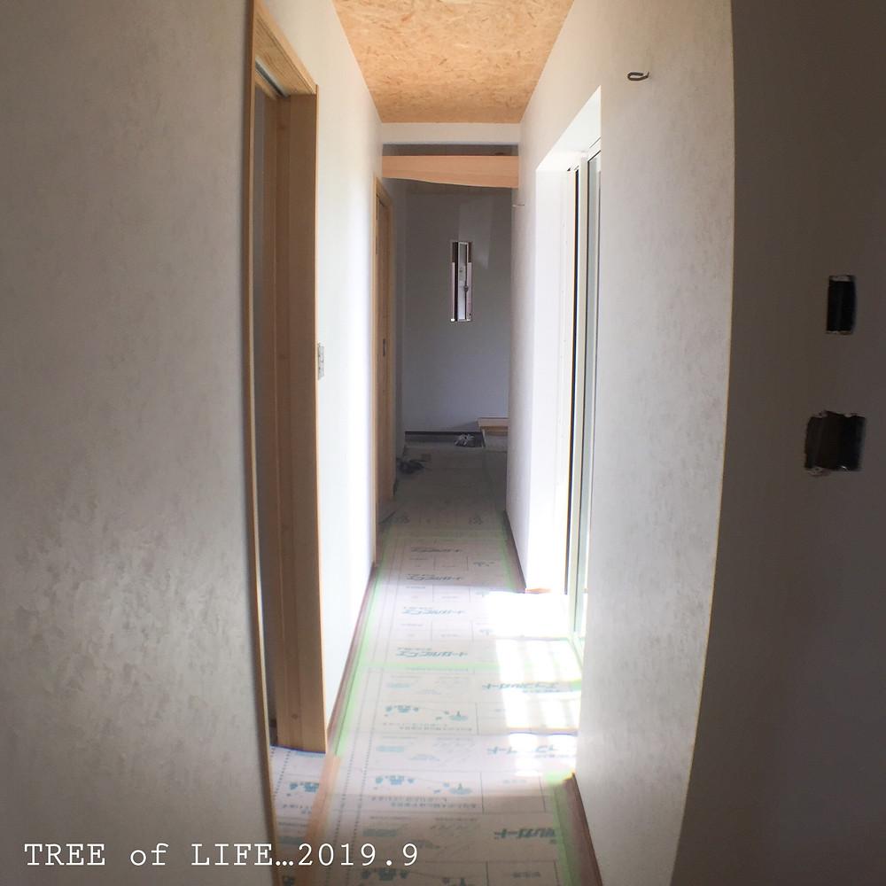 1階廊下 クロス施工済