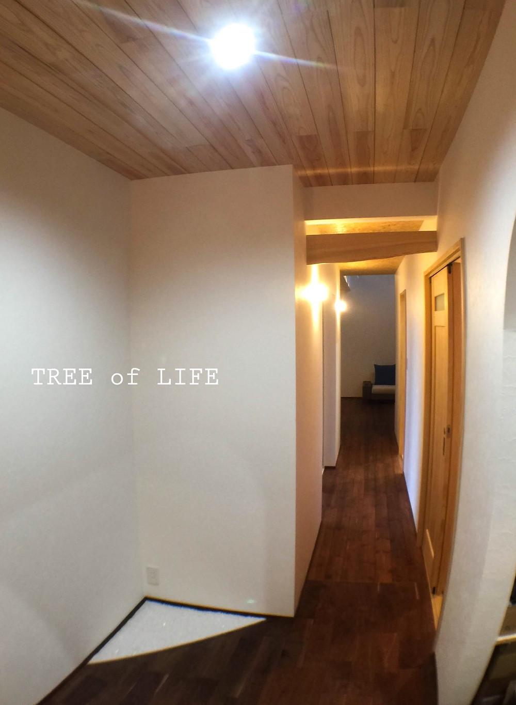 1階廊下 玄関→リビング