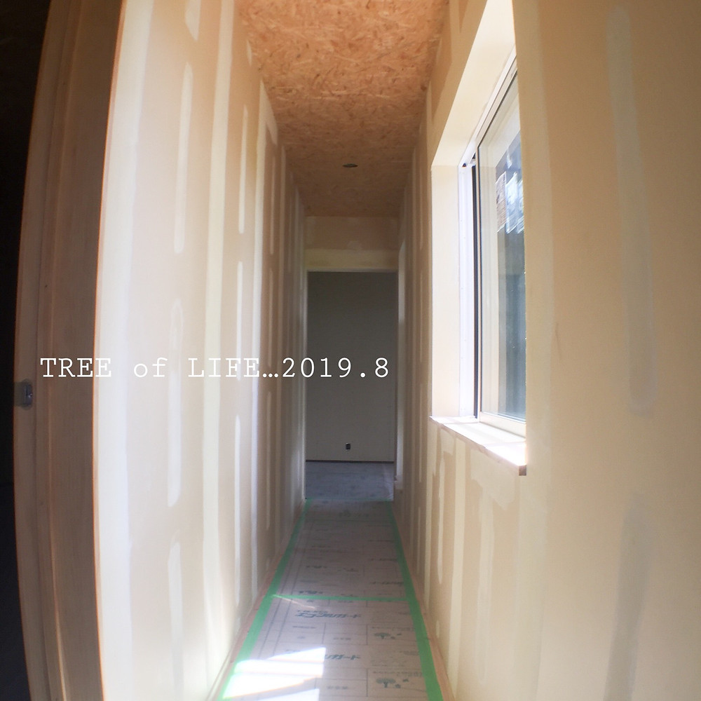 壁 パテ(2階廊下)