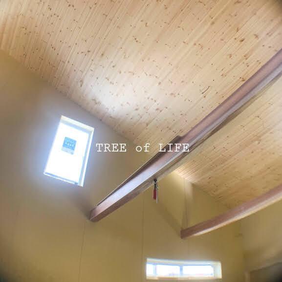 1階壁とむくり天井