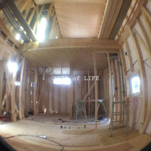 リビング・キッチンなどの天井