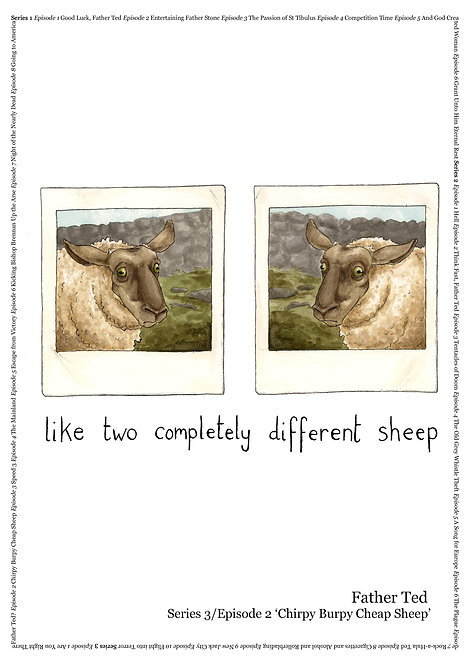 Two Completely Different Sheep