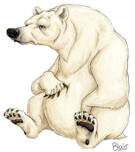Polar Bear - Original Artwork
