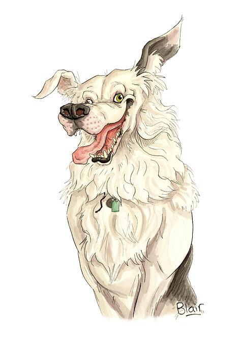 Bespoke Pet Caricature