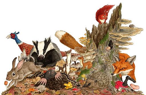 Woodland Wildlife - Original Artwork