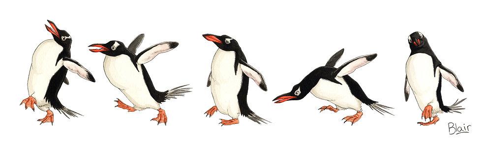 Gentoo Penguins - Original Artwork