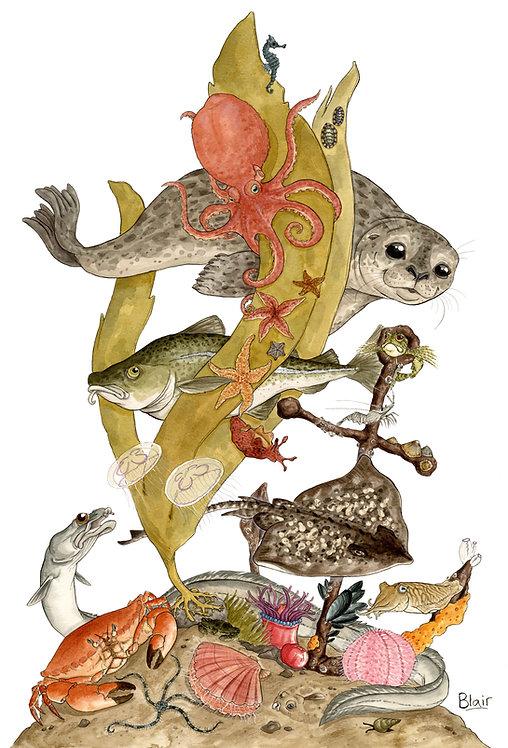 Sea Life - Original Artwork