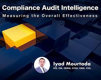 Compliance Audit Intelligence - cover.jp