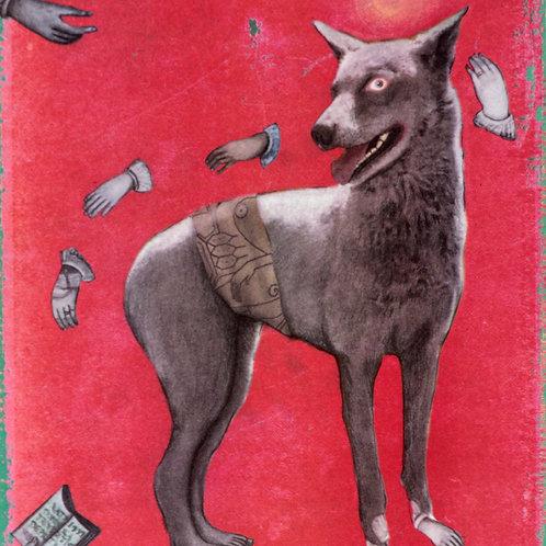Frans av Assisis kära hund, Nina Bondeson