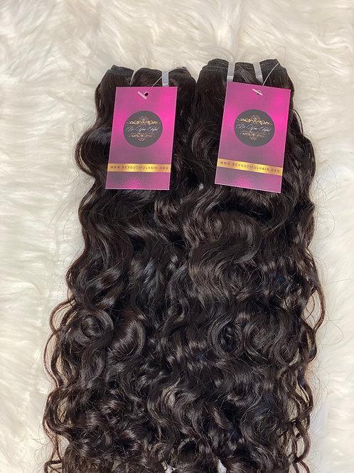 Burmese Curl