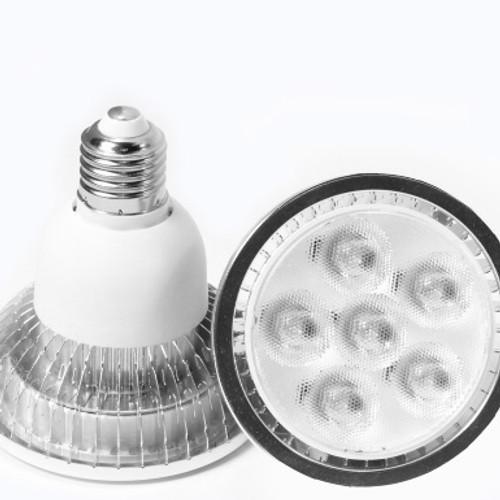 LED PAR 30 Dimmable   9 Watt