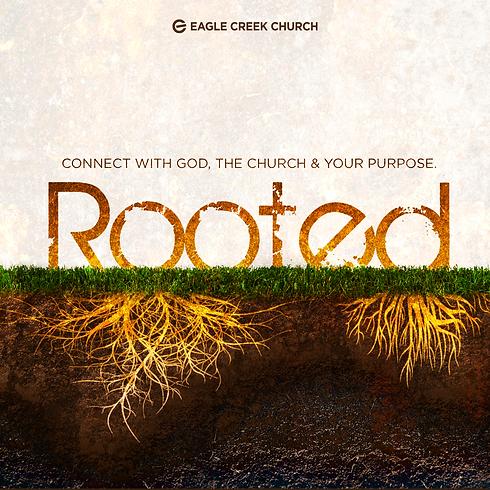 Eagle-Creek-Church-Lees-Summit_Rooted