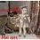 Thumbnail: Tenue pour poupée Françoise Modes et Travaux Mai 1955