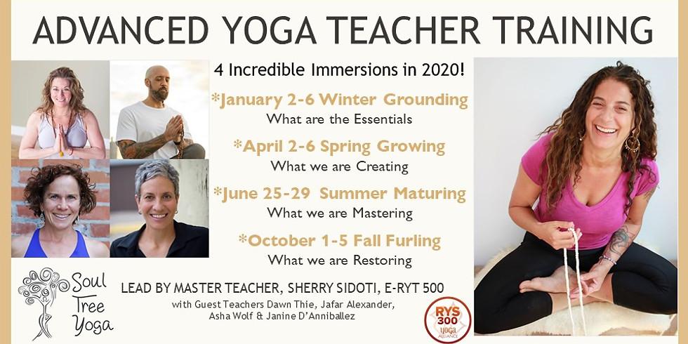 Advanced Yoga Teacher Training 2020