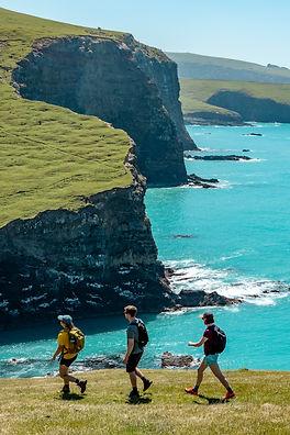 Walkers on Stony Bay cliffs copy.jpeg