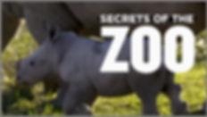 SecretsoftheZoo.jpg