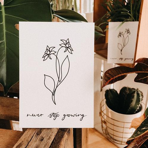 """Postkarte Narzissen """"never stop growing"""""""