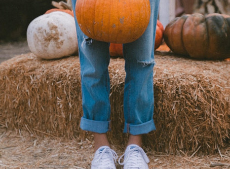 Pumpkin Patch Mania (And Where To Go)