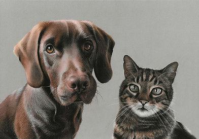 dog and cat pastel portrait
