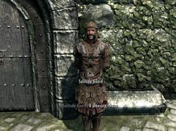 Guard Dialogue Overhaul SE