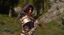 Ancient Nord Pickaxe Replacer