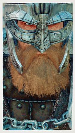 Beards of Power - Sons of Skyrim - Male npc replacer