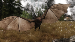 Enemy Bats - Elements of Skyrim pt.7