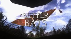 Better Bats