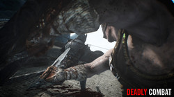 Deadly Combat