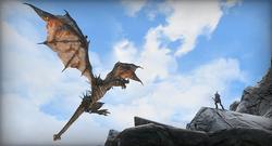 Talkative Dragons