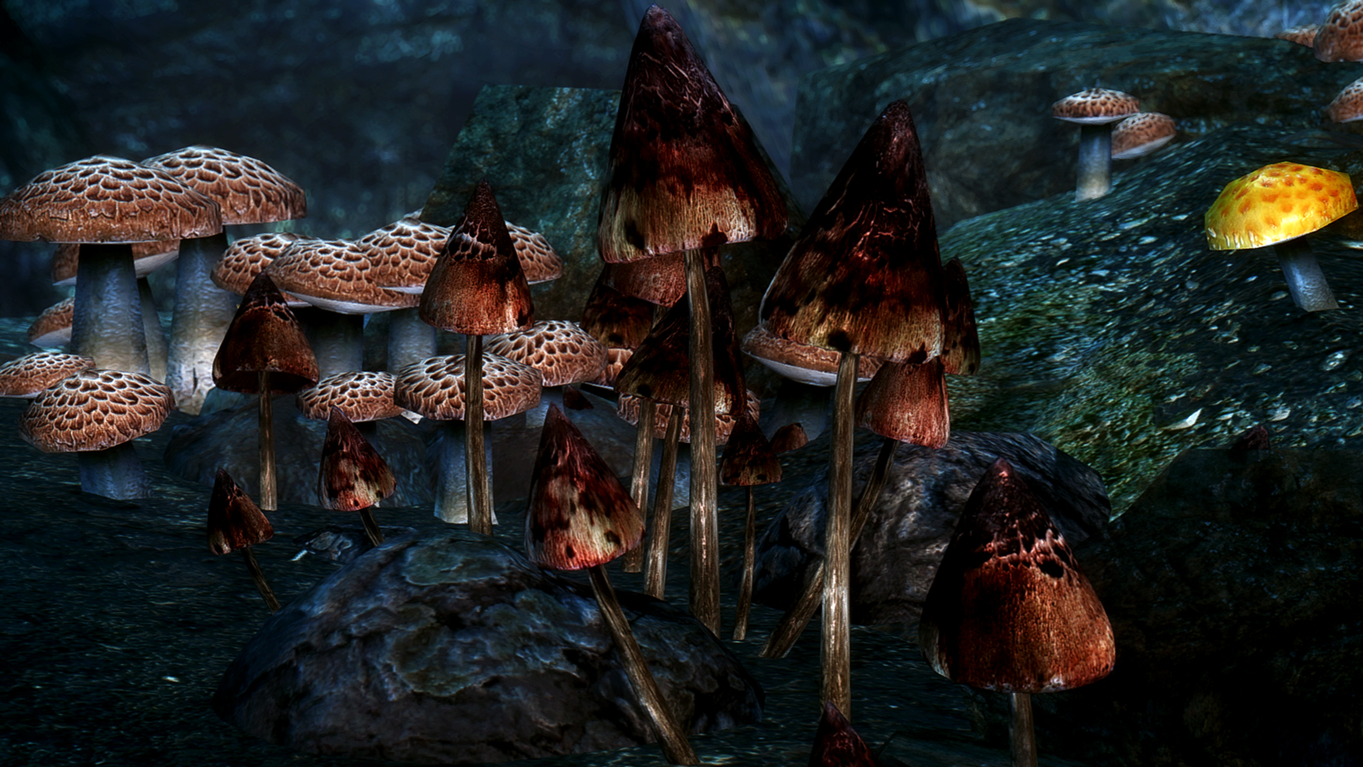 Realistic HD Mushrooms