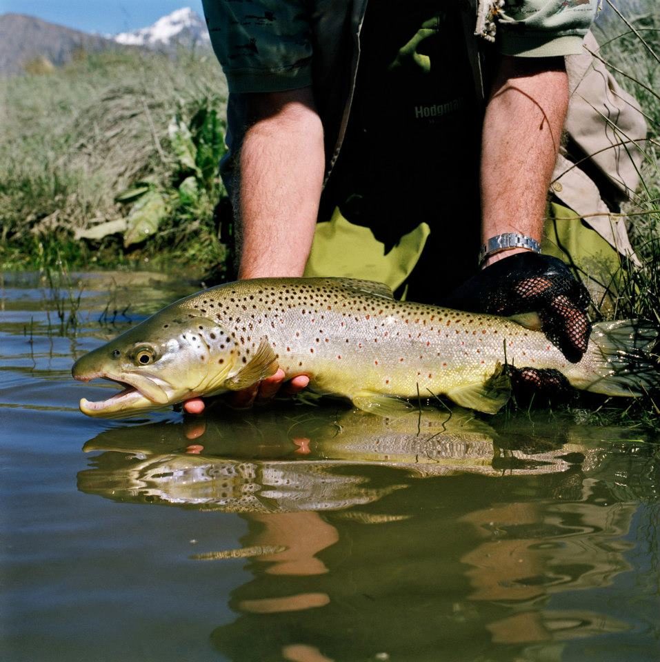 Fly Fishing Tekapo