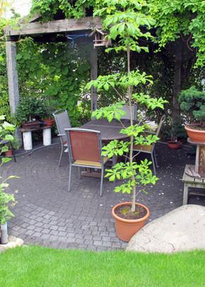 terracotta_terrasse_5.jpg