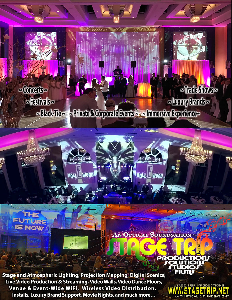 Projection Mapping 2019_1Page Ad .jpg